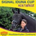 Hengste beim Signal Iduna Cup